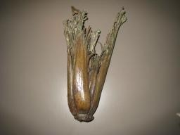 12. celery