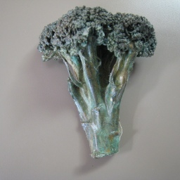 17. broccoli 4.75 in