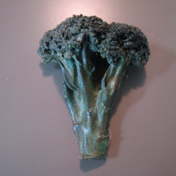 16. broccoli 5 in diam